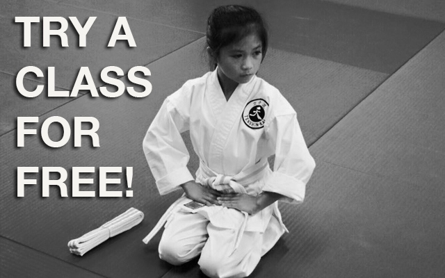 Try a Class Free!
